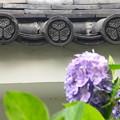 三つ葉葵の屋根瓦