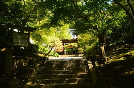 駒ヶ滝・最勝院