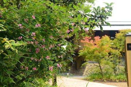 岡田茂吉記念館
