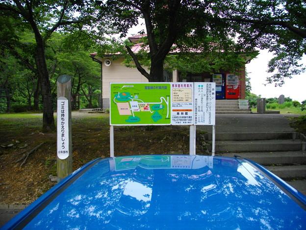 宮島緑の村~お待ちしています