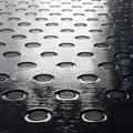 Photos: 濡れる地面