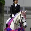 写真: 川崎競馬の誘導馬05月開催 藤Ver-120514-03-large