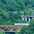 Photos: 中央線四方津の大呼戸橋梁を渡る189系ホリデー快速富士山号