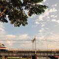 堀切橋を渡るAE100型京成シティライナー