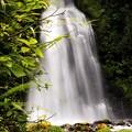尾の島の滝(高さ・30m)