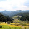 Photos: 鞍掛山展望台より見下ろす