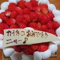 Photos: イチゴのケ-キ