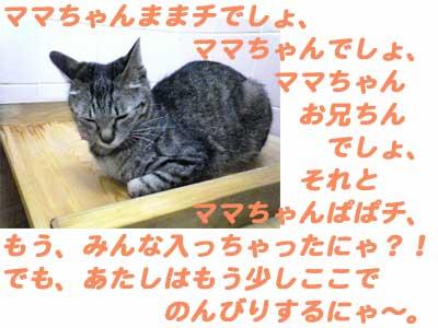 2005/5/2-2 にゃごやな一日