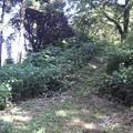 Photos: 末森城二の丸跡手前に架かる土橋遺構。だいぶ浅くなり草に埋もれてま...