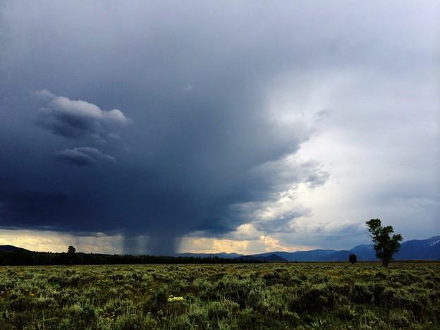 Photos: 曇り…所により雨