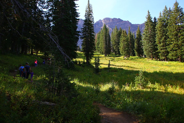 Meadow on the Cecret Lake Trail
