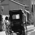 写真: 鎌倉散歩 3