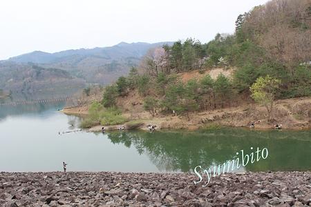 前川ダム 2012.4.30