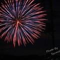 Photos: 夜空に輝く大輪の花