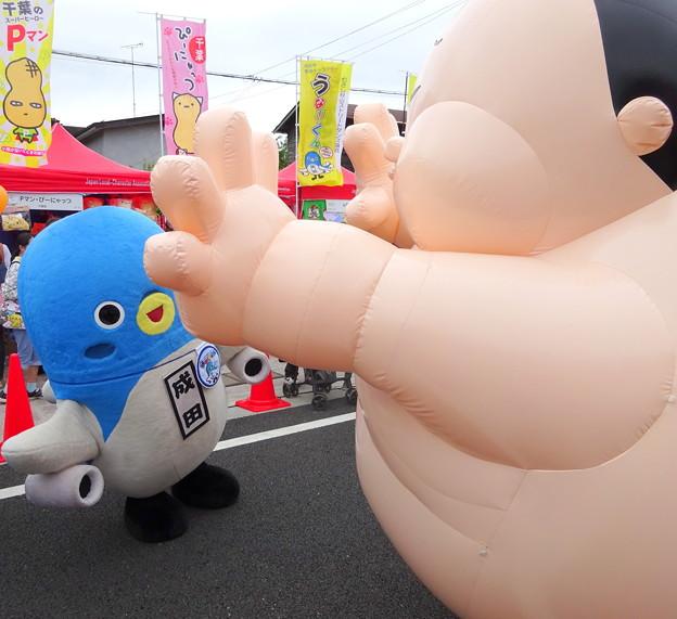 Photos: ぴあにしきと相撲をとる・・うなりくん