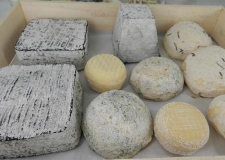 やぎのチーズ(札幌)
