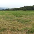 写真: 石狩羊牧場-農地