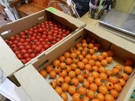 オレンジ千果(札幌)