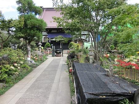 常泉寺 本堂