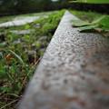 写真: 古の鉄路