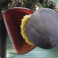 写真: バナナ【甘蕉:芭蕉実】の花