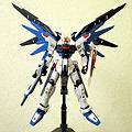 RG ZGMF-X10A
