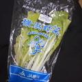 写真: ♪【横浜菜】子供の頃好きだった 「白じゅく」を品よくした感じの葉野...