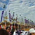 Photos: IMGP7540_edited-1