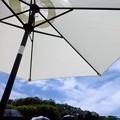 Photos: 日傘