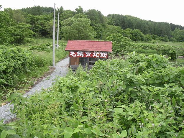 Photos: 北星駅待合室