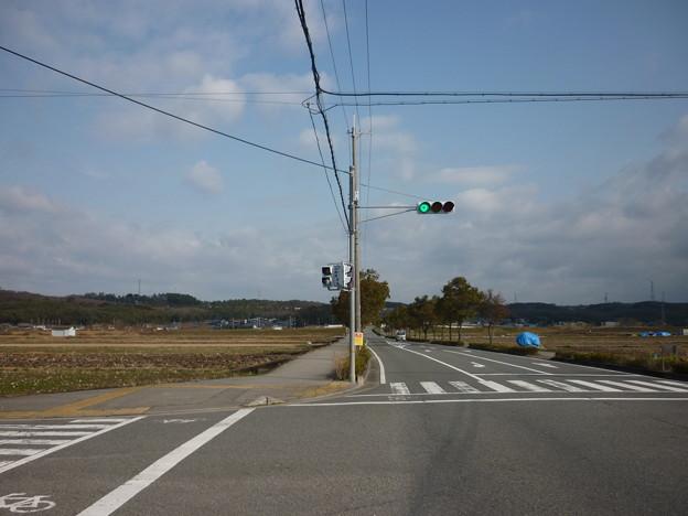 写真: P1020041