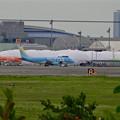 写真: エアフロントオアシス(小針公園)から見たソーラーインパルスの移動式格納庫とFDA機 - 4