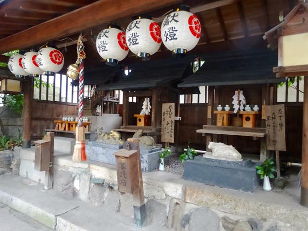 洲崎ちょうちん祭 2015 No - 6