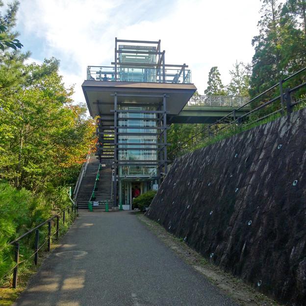 愛・地球博記念公園:「サツキとメイの家」 No - 11(展望塔)