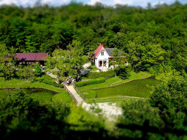 愛・地球博記念公園:「サツキとメイの家」 No - 29(展望塔から見下ろした景色、ミニチュアライズ)