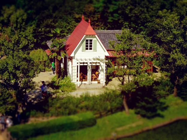 愛・地球博記念公園:「サツキとメイの家」 No - 32(展望塔から見下ろした建物、ミニチュアライズ)