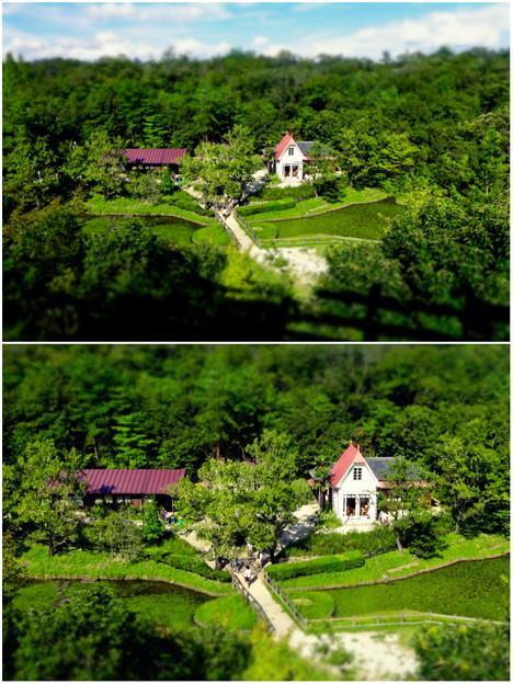 愛・地球博記念公園:「サツキとメイの家」 No - 35(展望塔から見下ろした建物、ミニチュアライズ)