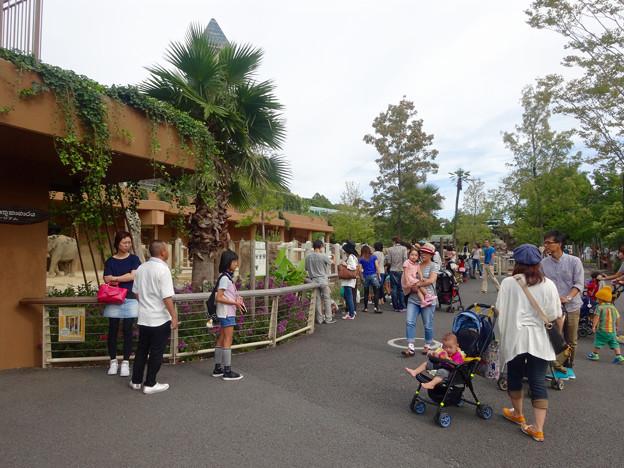東山動植物園(2015年9月)No - 14:休日で賑わう「ゾージアム」(新アジアゾウ舎)