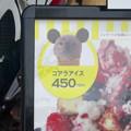 東山動植物園(2015年9月)No - 40:「ZOOASIS(ゾアシス)」でオリジナルのコアラアイス?