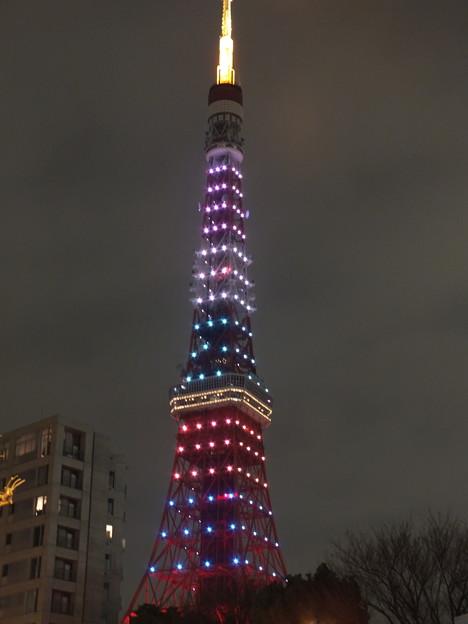 東京タワー 5色のダイヤモンドヴェール2