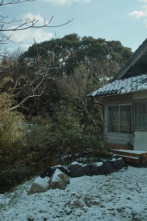 snow03262012dp2