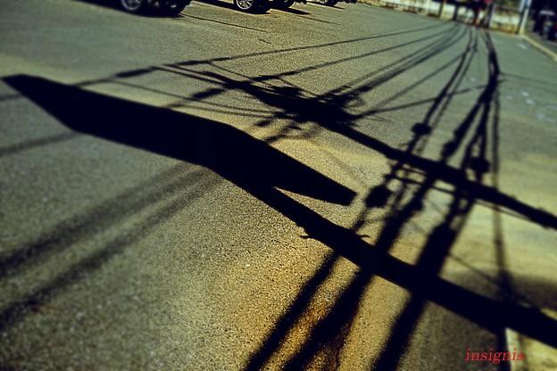 猛暑日.......