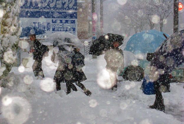 early snow 登校 2 ☆