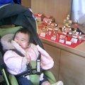 写真: 奈良までお雛様買いに来た