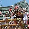 Photos: 灘のだんじり祭り