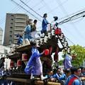 Photos: P1110005