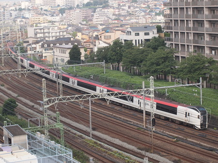 E259系特急成田エクスプレス 横須賀線横浜~武蔵小杉