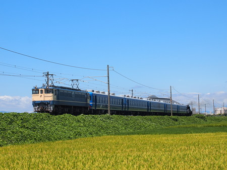 EF65 SL北びわこ回送 北陸本線田村~坂田