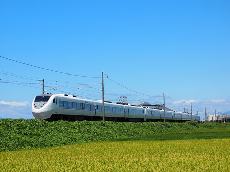 681系特急しらさぎ 北陸本線田村~坂田
