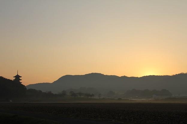 国分寺の夜明